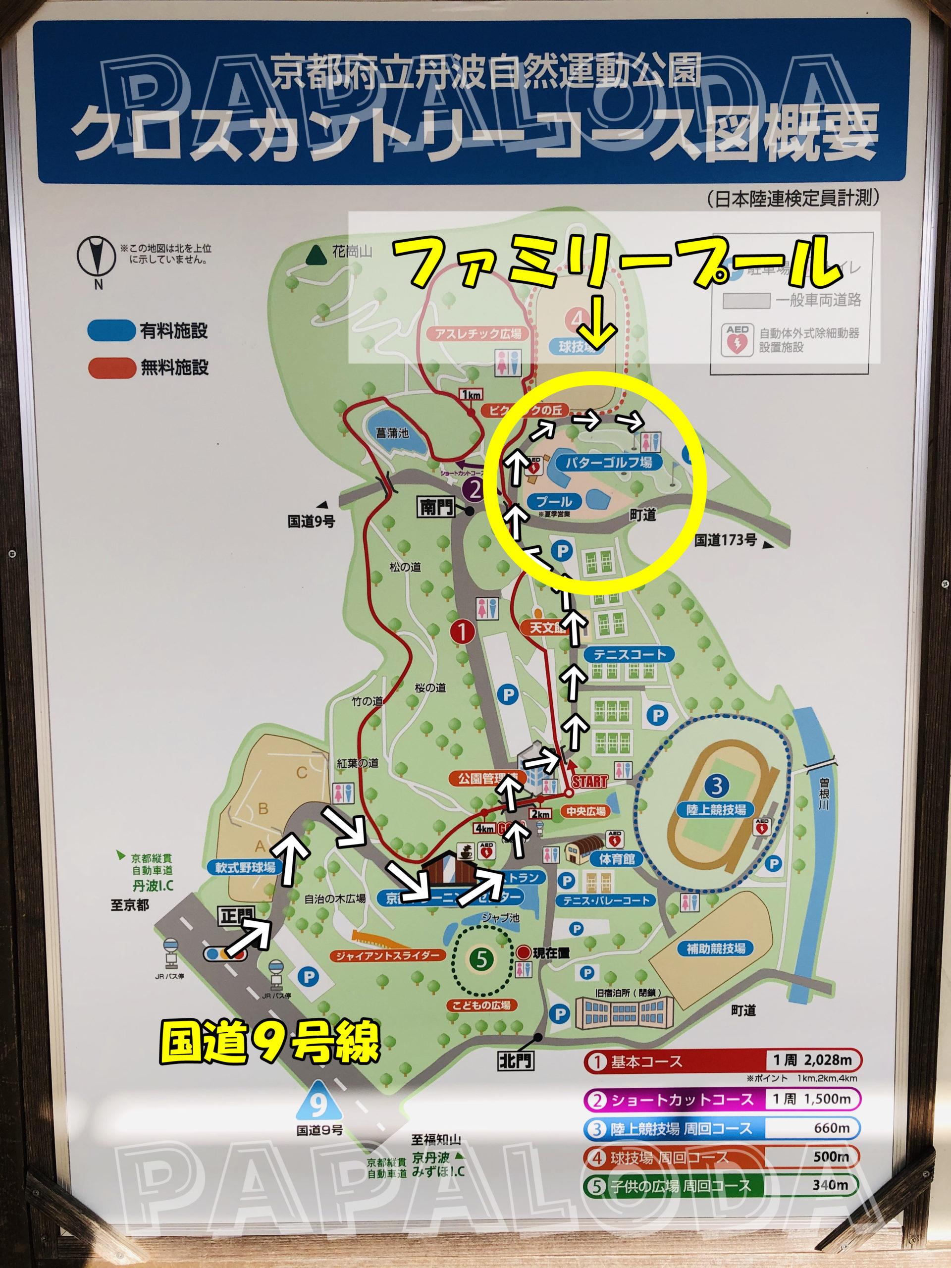丹波自然運動公園プール002