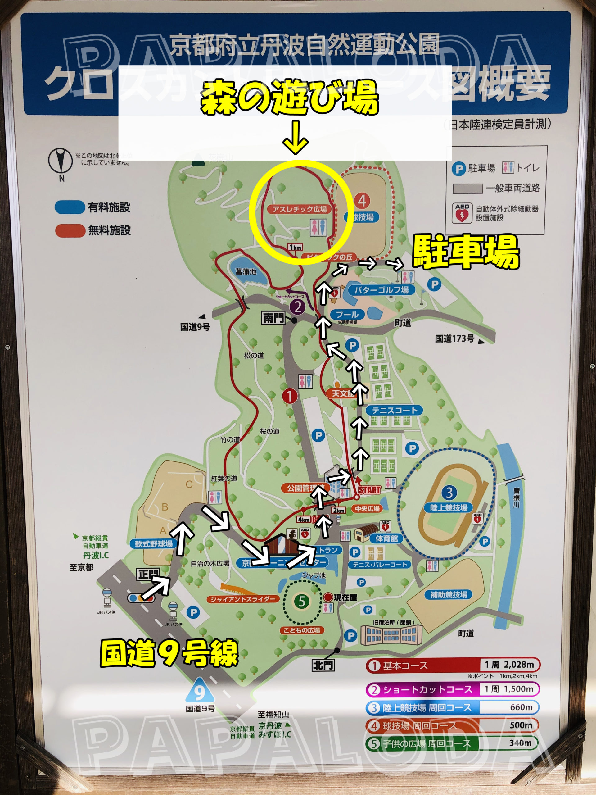 丹波自然運動公園森の遊び場002
